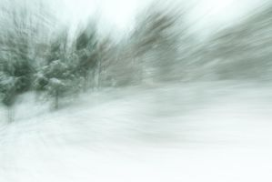Ice Storm 1 by bovey-photo