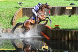 DHL Water Obstacle Series Bay Gelding Pt 6 by LuDa-Stock