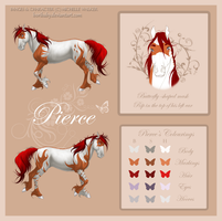 NEW Pierce Reference by MichelleWalker