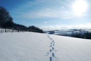 Snowscape Stock 14 by Sed-rah-Stock