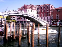 Bridge of the Barefoot- Venice by atty12