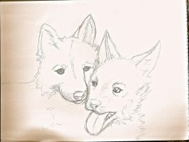 SR-- Red Wolf Pups for TheShadow777 by SageFillyLuna