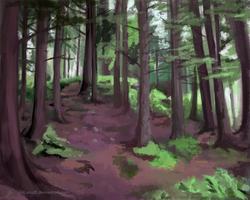 Environment Practice-forest by JillLenaD