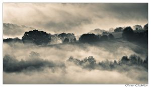 Another foggy morning by olivierchattlain