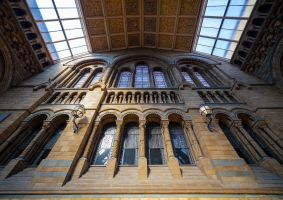 Natural history museum by juhku