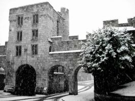 Micklegate bar in the snow . by velar1