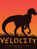 Velocity by Falcolf