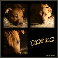 Rokko mosaic by poisonous