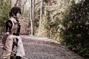 Souji Okita - Cherry blossoms by dark1110