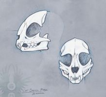 Sketch - Cat Skull Mask by Bueshang