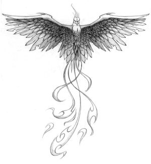 Tattoo Designs Drawings