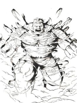 The Hulk by zwarback
