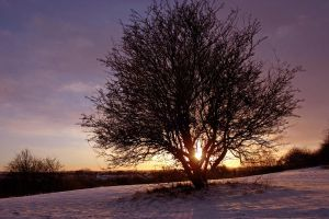 Winters Sunset by scotto