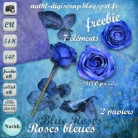 Blue Roses bleues PNG :Stock: by NathL-fr