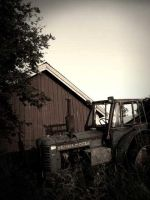 Old Tractor by Belsebumsan