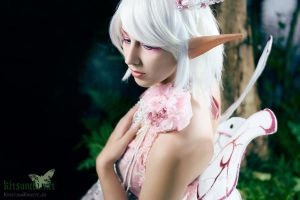 pearly close up - Fairy by Naraku-Sippschaft