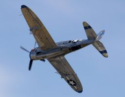 Republic P-47D Thunderbolt Flyby 2 by shelbs2