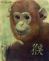 Year of the Monkey by Alwong