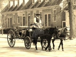 Horse and carriage in Colonial Williamsburg Va. by ArtieWallace