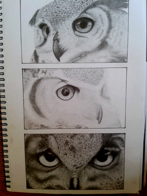 3 Owls. by heidianne