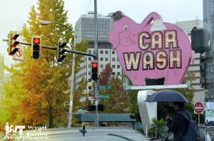 Pink Elephant car wash by RoadKillConcepts
