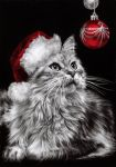 Christmas Kitty. by dreamarian