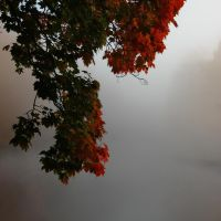Autumn Melancholy by Photopathica