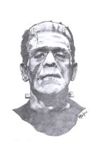 Frankenstein study by paulabstruse