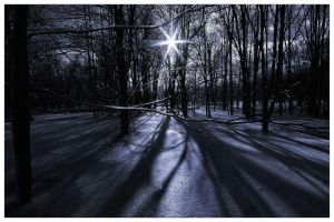 Frozen Shadows III by aquapell