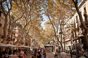 Streets of Barcelona by rottensky