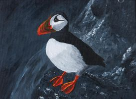 PUFFIN by peimar