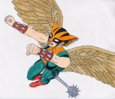 HawkGirl by Druce-White-Owl