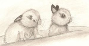 Pair of Bunnies by paintedbutterfly
