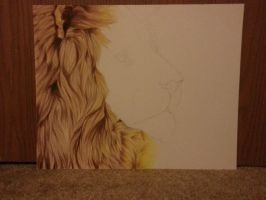Day Five - The King of Africa - WIP by MissAudi