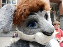 LondonFurs Summer Party 2014 3 by ggeudraco