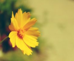 Yellow by Elillustrated