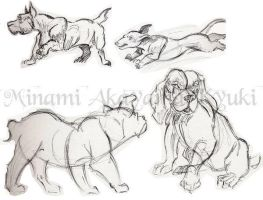 Animal Studies . Dogs 2 by Dragon-Rider03