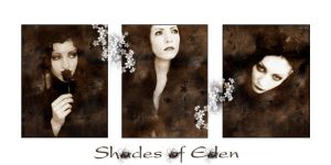 Shades of Eden by wix