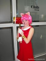 Amy Rose Cosplay by SuperSonicHero10