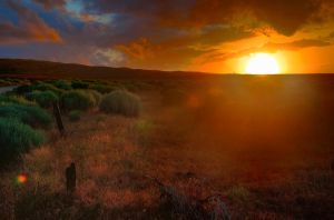 Dry Summer Sunset by nemisis11
