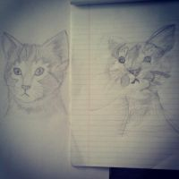 Drawing kittys with my daughter ^~^ by VillainyThrives