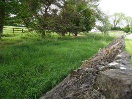 Wall and grass stock by folipoo