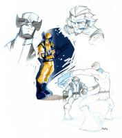 Wolverine by Lapsus-de-Fed