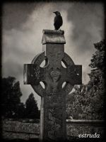 The Raven by Estruda