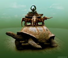 Turtle by Leto23