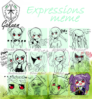 KG: Expressions Meme Thingy by ChromaticHearts