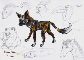 African Wild doggy+sketches by Fly-Sky-High