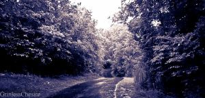 Secret Road by PixiePoxPhotography