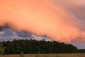 Untitled by PillekasInAction