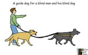 Guide Dog by Terraced-Fields